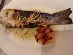 bardot_fish