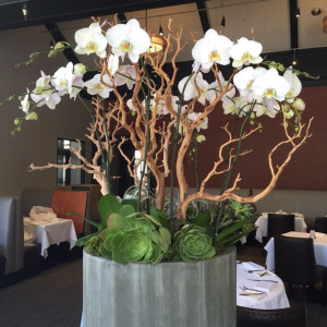 Alexanders_Steakhouse_Pasadena_5